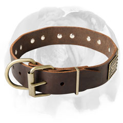 Durable english Bulldog dog Collar