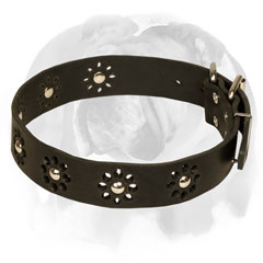 English Bulldog Leather Collar With Unique Flower Design