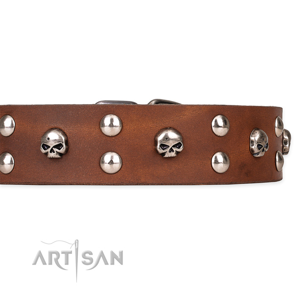 Full grain genuine leather dog collar with polished leather strap