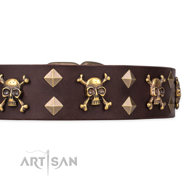 Top quality leather dog collar for safe pet control