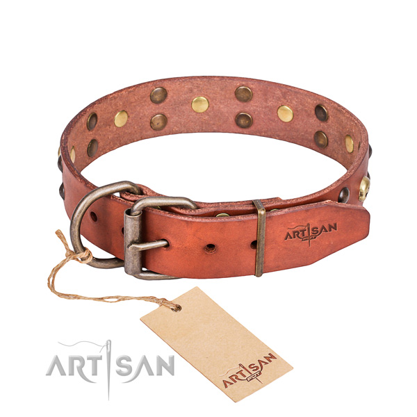 Fancy leather dog collar for safe pet control