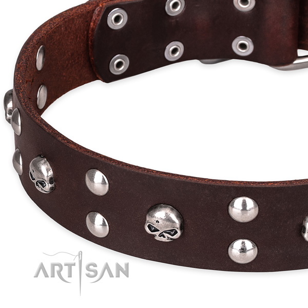 Casual style leather dog collar with unique design embellishments