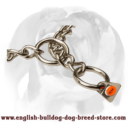 English Bulldog Choke Collar of High-Quality
