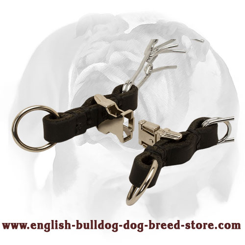 English Bulldog Collar with Quick Release Buckle