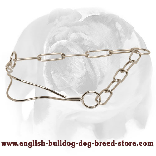 Reliable Dog Collar for English Bulldog