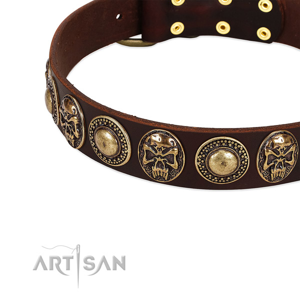 Full grain natural leather dog collar with embellishments for easy wearing