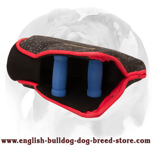 English Bulldog strong bite builder for young dogs