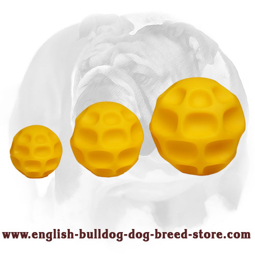English Bulldog ball made of tetraflex for different activities