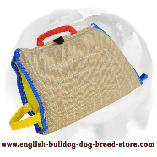 Durable English Bulldog Biting Sleeve