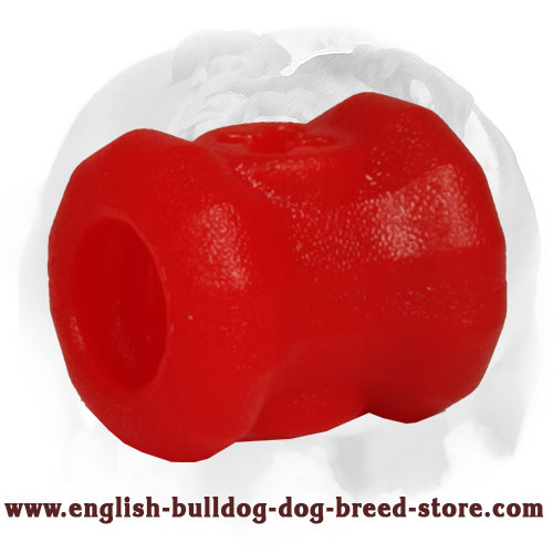 Bright Special Rubber Toy for English Bulldog
