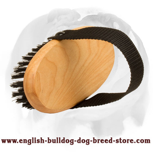 All-Coat Types Bristle Brush