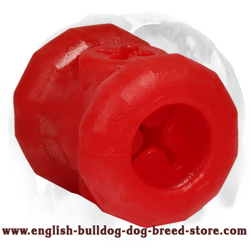 Safe English Bulldog Foam Dog Item