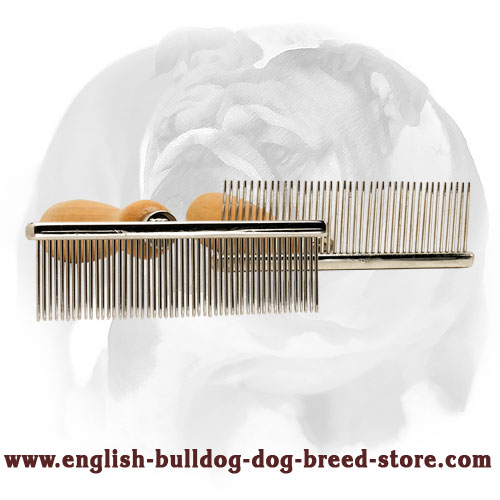 English Bulldog Brush with Durable Wooden Handle