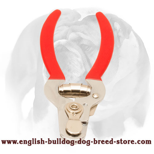 High-Quality Nail Trimmer for English Bulldog