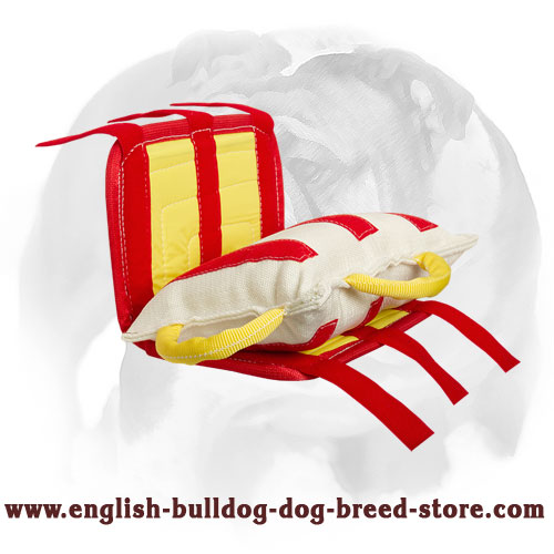 English Bulldog Puppy Bite Pad Equipped with Strong Handles