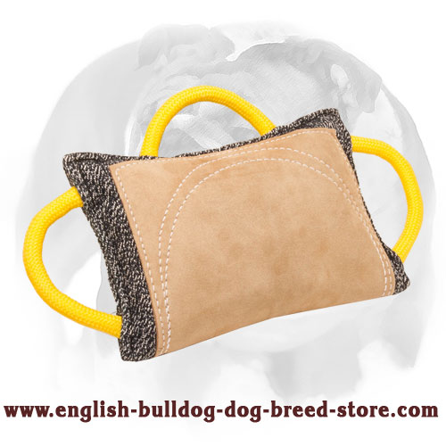 French linen bite pad for English Bulldog breed training