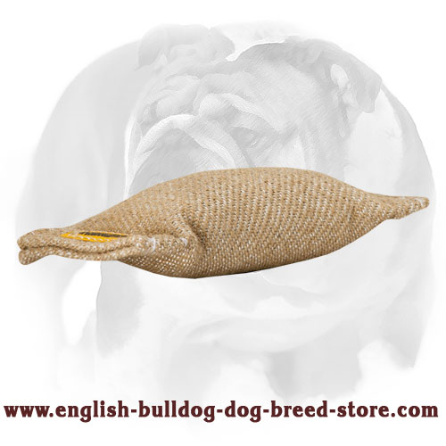 Jute bite tug for English Bulldog puppies training and playing