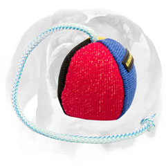 English Bulldog bite ball for training