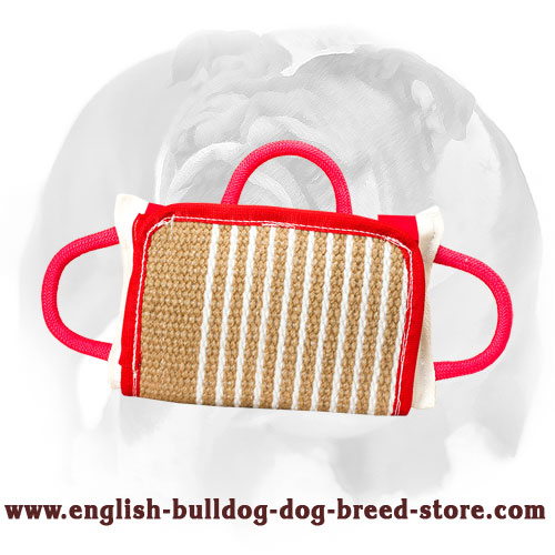 English Bulldog bite pillow covered with Jute for training