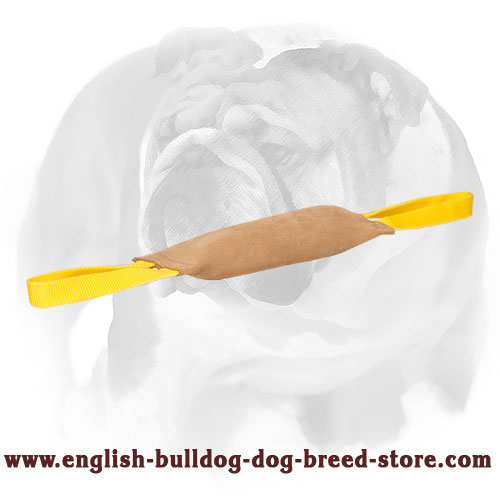 English Bulldog bite tug made of genuine leather for training and playing