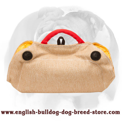 English Bulldog convenient puppy bite builder for training