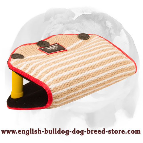 English Bulldog convenient puppy bite builder