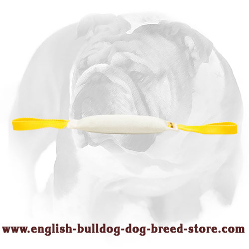 Durable fire hose bite tug for English Bulldog puppy training and playing