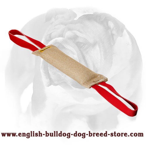 English Bulldog Jute puppy bite tug for training and playing