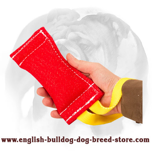 Durable puppy tug for English Bulldog bite training