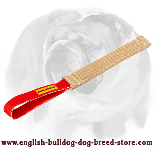 English Bulldog Jute puppy tug with nylon handle for bite training