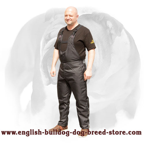 English Bulldog nylon scratch pants with adjustable belts