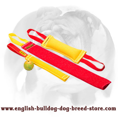 Strong and soft set of bite tugs with handles for training English Bulldog