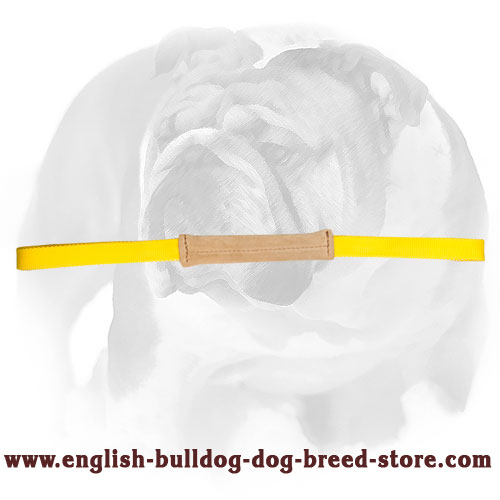 Durable puppy tug for bite English Bulldog training