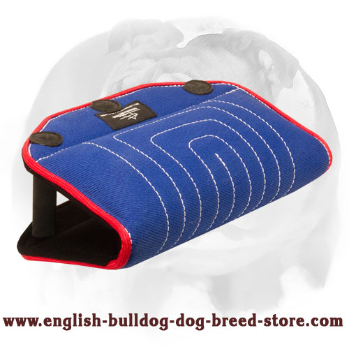 English Bulldog strong French linen bite builder for training puppies