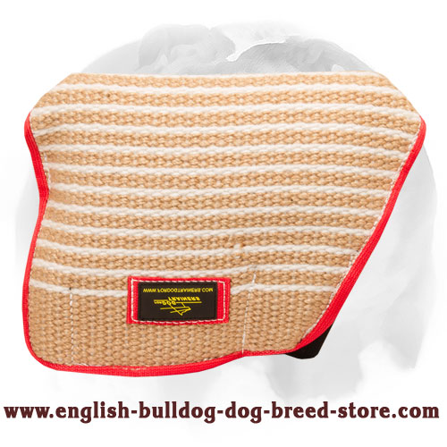 Strong bite builder sleeve for young English Bulldog