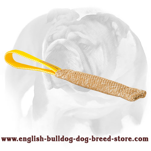 English Bulldog Jute bite tug for training puppies