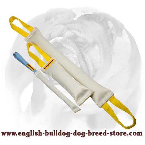 Strong set of bite tugs with handles for training English Bulldog