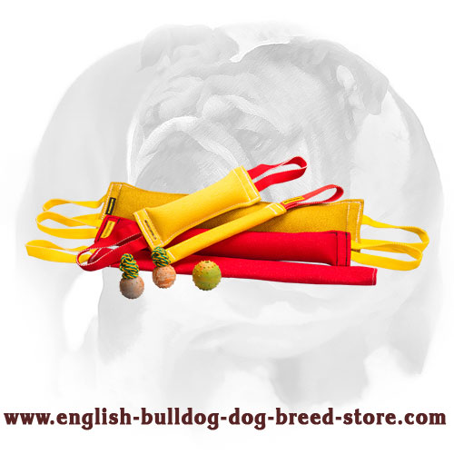 English Bulldog set of French linen tugs for bite training