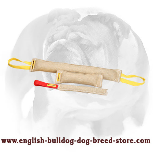 English Bulldog strong Jute bite tugs with handles for training