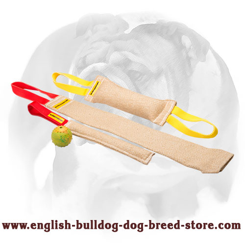 Set of Jute tugs for English Bulldog bite training