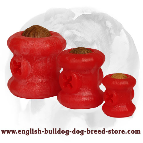 English Bulldog Chew Balls for Treat Dispensing