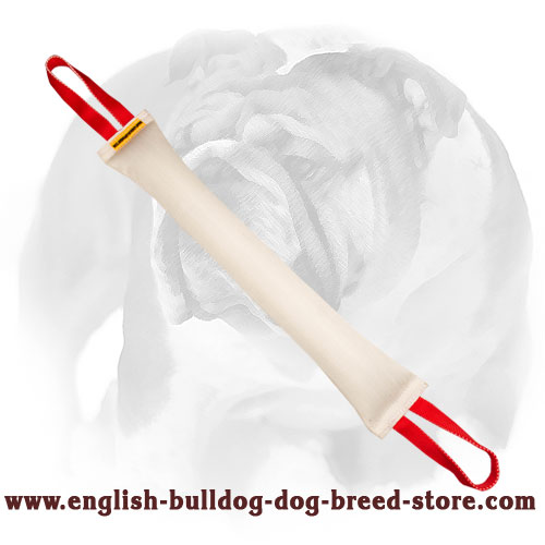 Long English Bulldog bite tug made of fire hose with 2 nylon handles for training