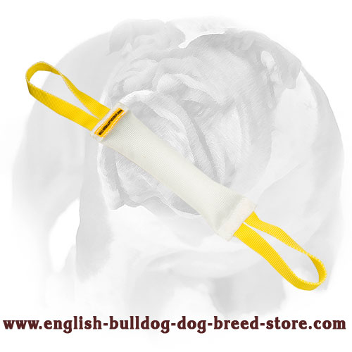 English Bulldog fire hose bite tug with 2 nylon handles for training puppies