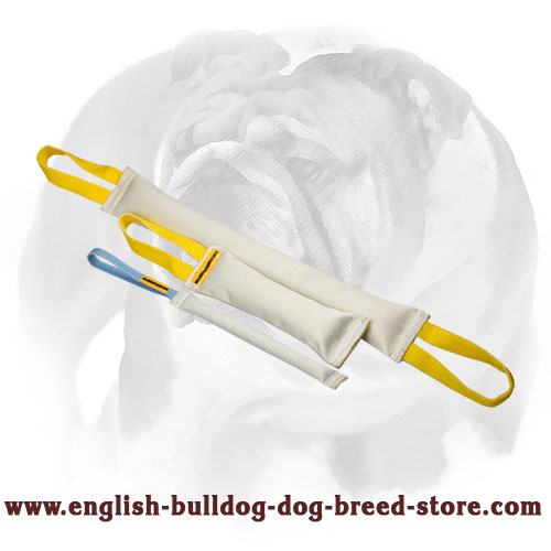 Set of Fire hose tugs for English Bulldog bite training