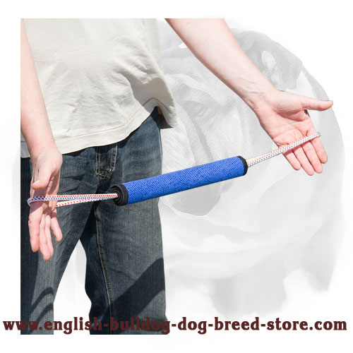Rolled French linen puppy bite tug for training English Bulldog