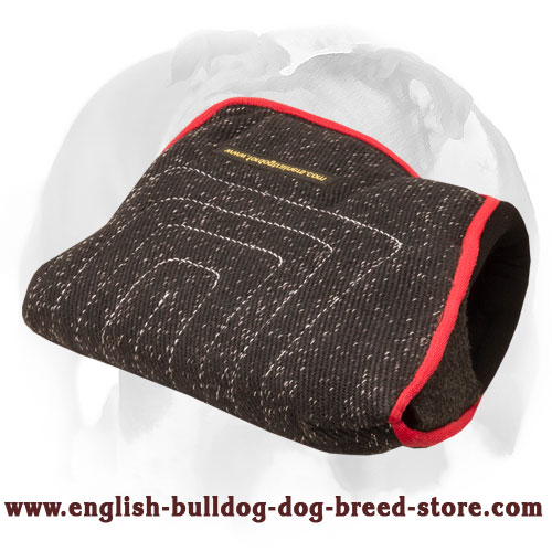 English Bulldog convenient bite builder sleeve with 2 handles for young dogs