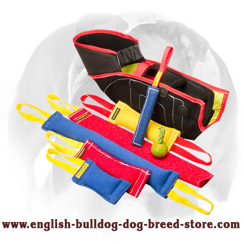 French linen English Bulldog set of tugs for bite training