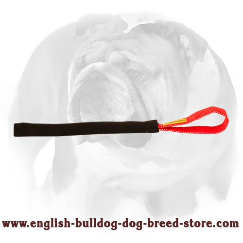 Puppy bite tug made of durable French linen for training English Bulldog