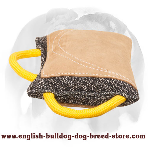 English Bulldog French linen bite pad with strong handles for training