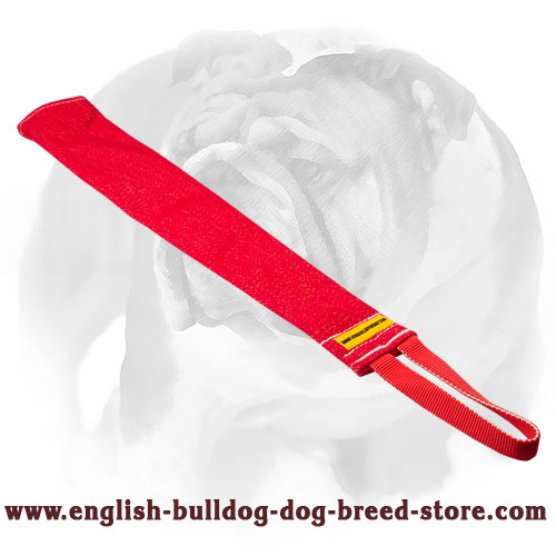 Durable bite rag for training English Bulldog puppies